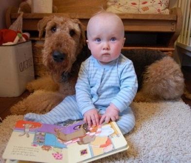 airedale-terrier y bebe