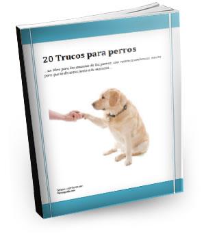 libro-perrospedia